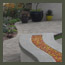 modern garden with curved firepit, seating bench, outdoor kitchen, succulent s, and paver patio